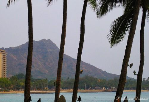 Aloha Diamondhead May 16th ❤