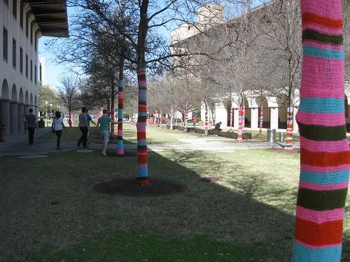 Yarn Bombing in Austin