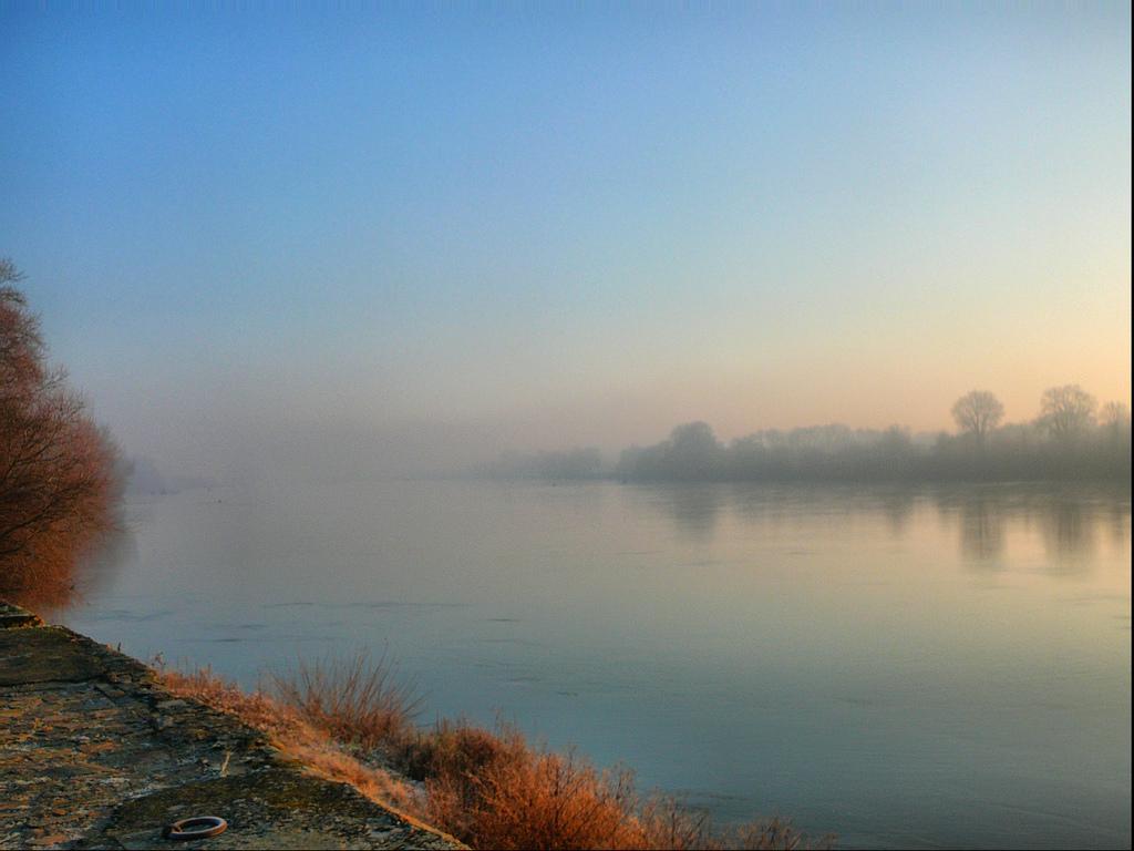 Niebla sobre el Loira, en invierno. Autor, Arnaud Abélard