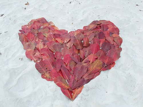 201202140249_heart