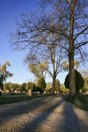 The Dublin Cemetery road with trees & shadows, Dublin, Ohio. Photo copyright Jen Baker/Liberty Images; all rights reserved.