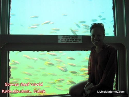 Underwater Observatory, Borneo Reef World