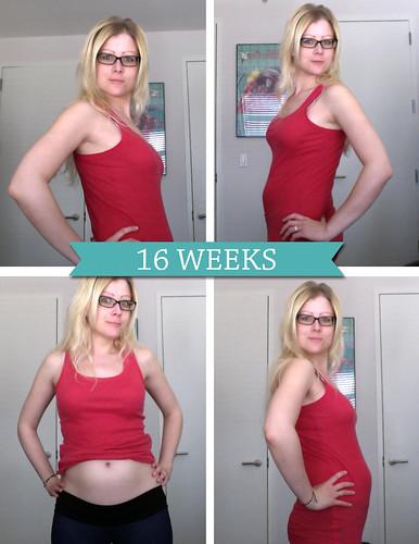 16weeks
