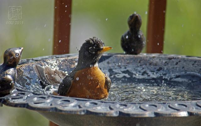 Robins Bath 03