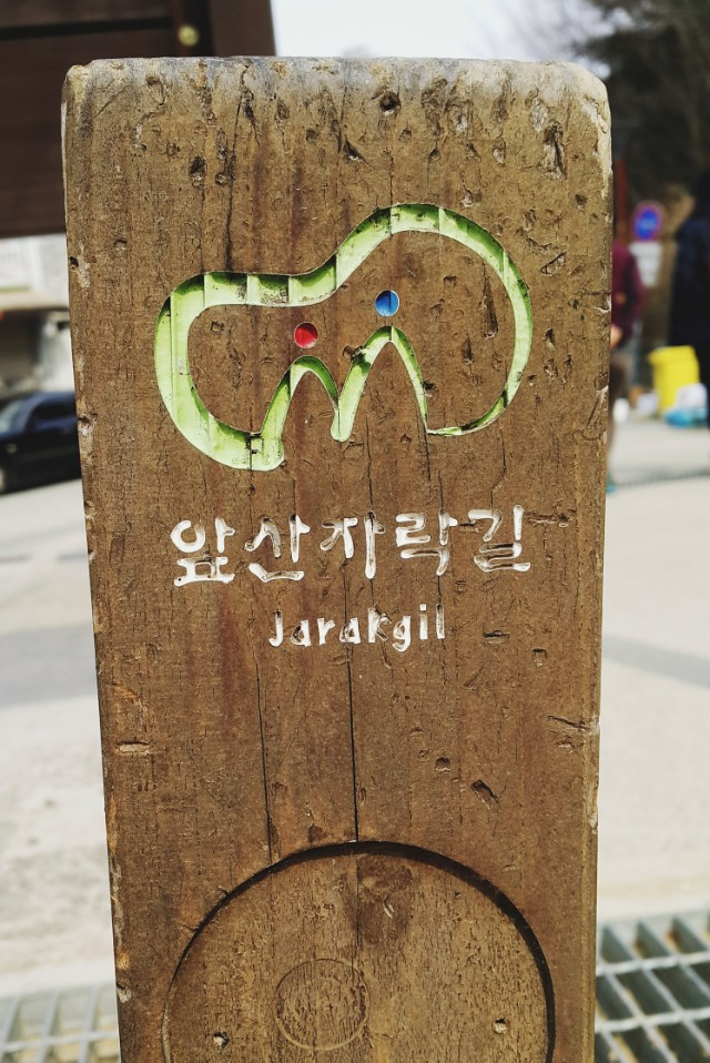 DAEGU // HIKING APSAN - TRAIL TO MT. SANSEONG