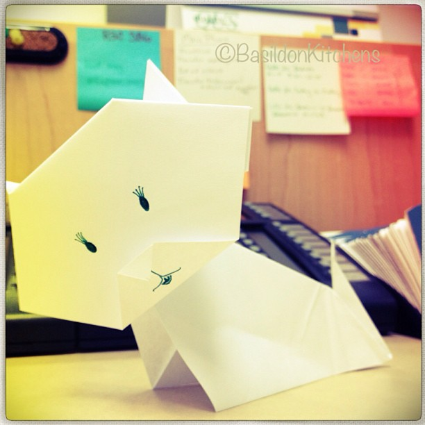 May 15 - origami animal {gotta love Google!}  It's supposed to be a cat; not too bad for a first try ;) #photoaday #origami