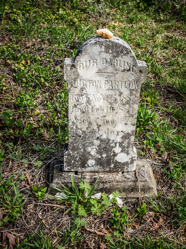Matthews Cemetery-005