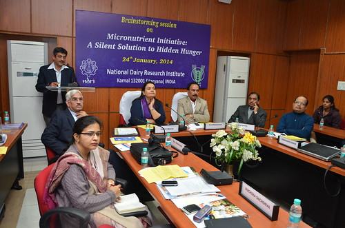 Participants at the national-level experts' meeting