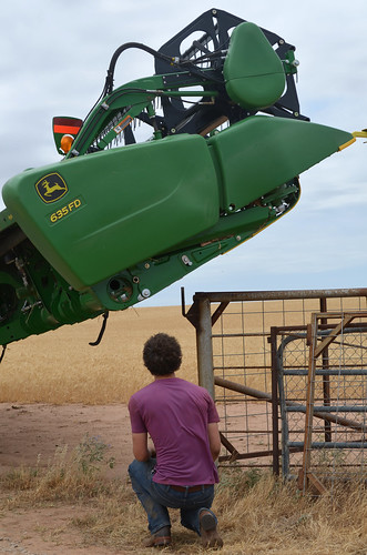 Trying to walk in the combines requires spotters