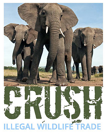 Crush Logo