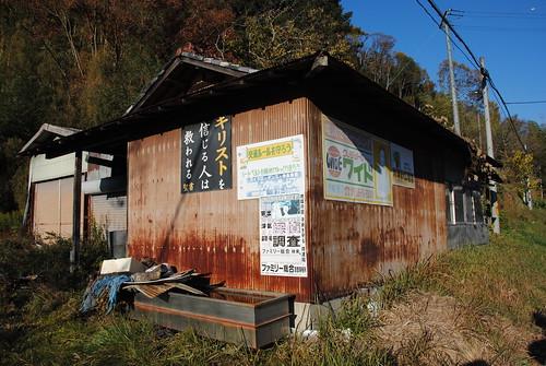 Obara Shikizakura 003