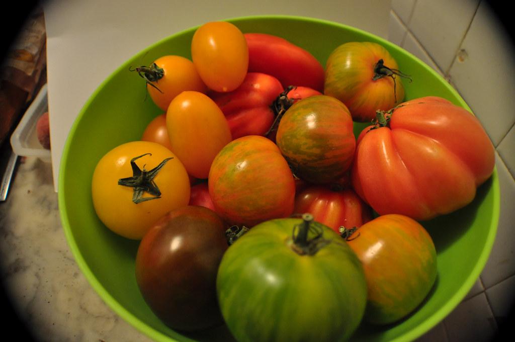 Tomates Multicolores_2