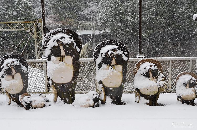 嵯峨野觀光鐵道-冬雪16.jpg