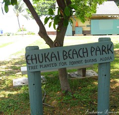 Ehukai Beach Park May 15th ❤