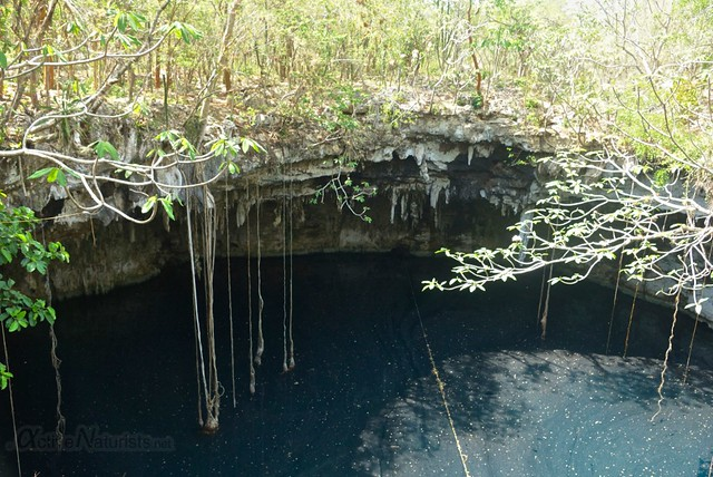 naturist 0000 cenote Xoch, Yucatan, Mexico