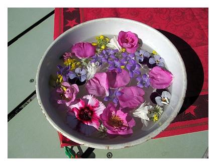 Kukkavati: Kukkia ja terälehtiä kellumassa vedessä.
