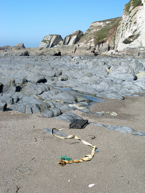 Aymer Cove 2