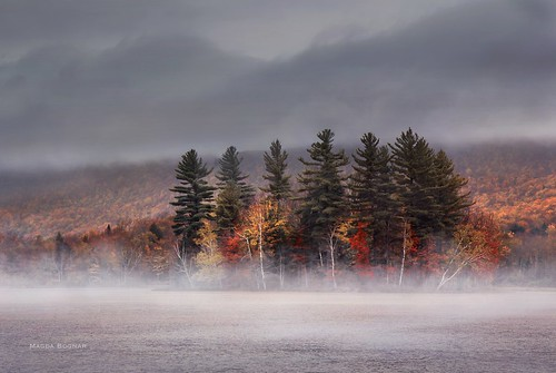 Autumn in Vermont II