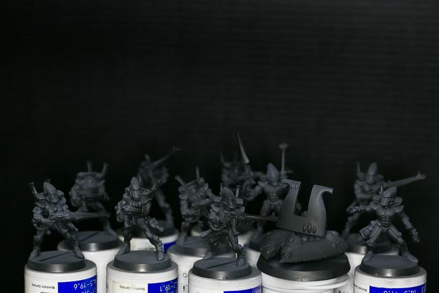 Eldar Guardians - Guardianes Eldar 001.jpg