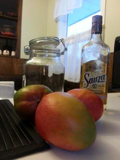 Mango Tequila stuff