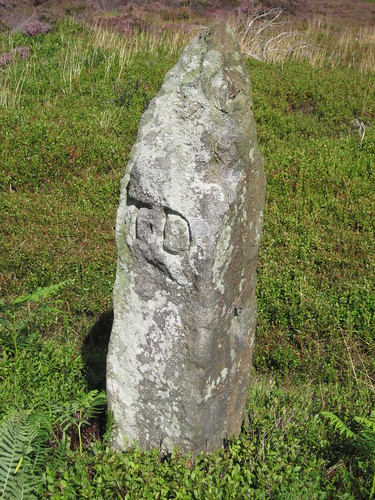 Pricket Thorn Stone
