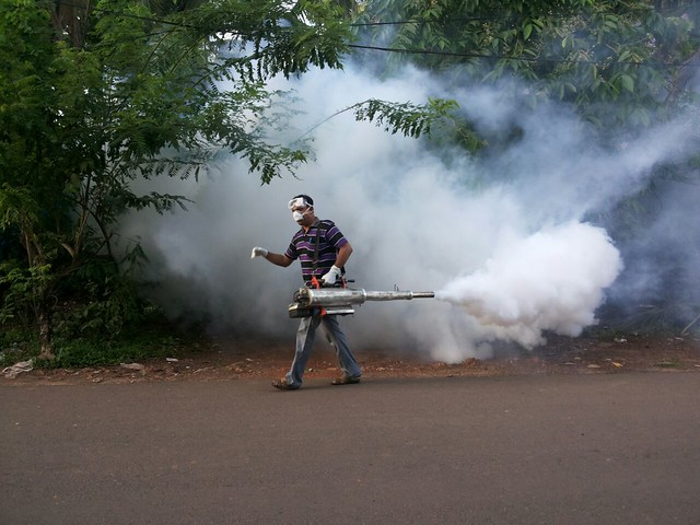 Fogging to kill mosquito