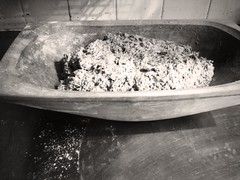 dough bowl with dough