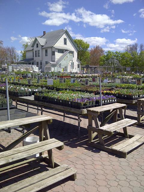 garden center 1