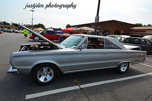 impala muscle (2)
