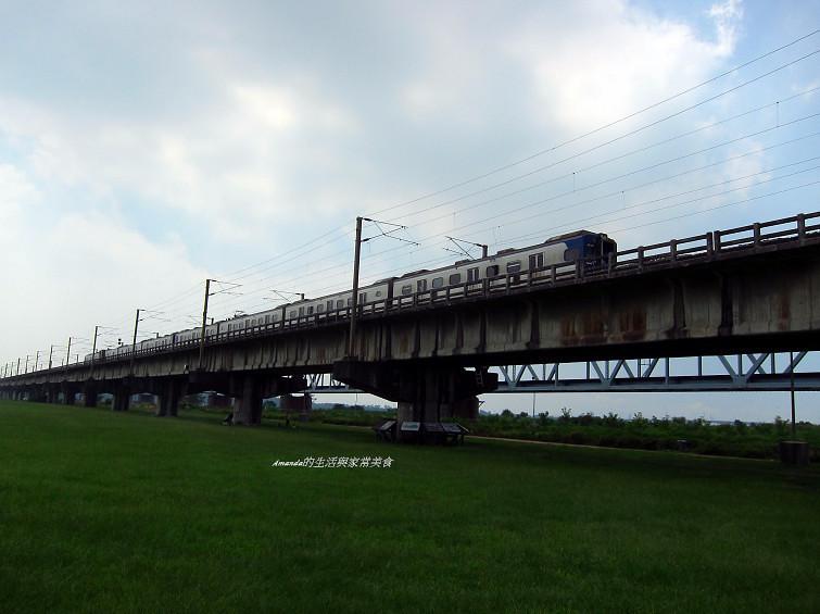 大樹舊鐵橋生態公園 (27)