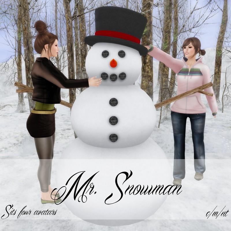 Flash Friendly Poses Mr. Snowman
