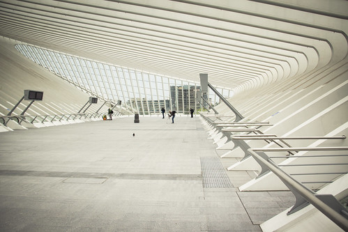 The Bird, the robot and the Photographers (Gare de Liège-Guillemins, Belgique) - Photo : Gilderic