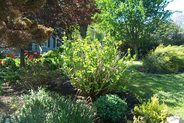 Gardens13May130090
