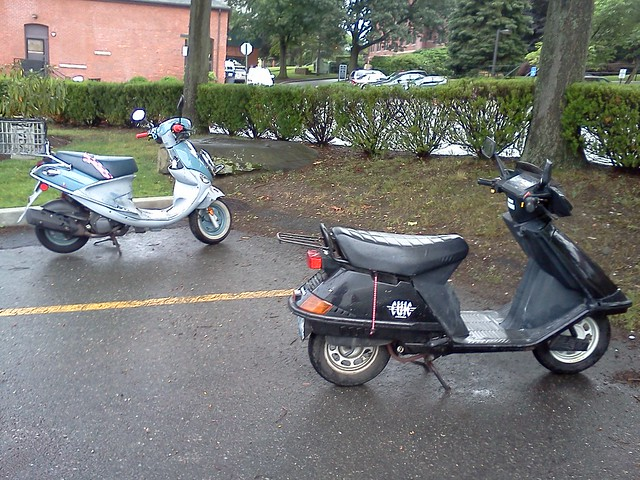 Genuine Buddy 150 in Honda Elite company