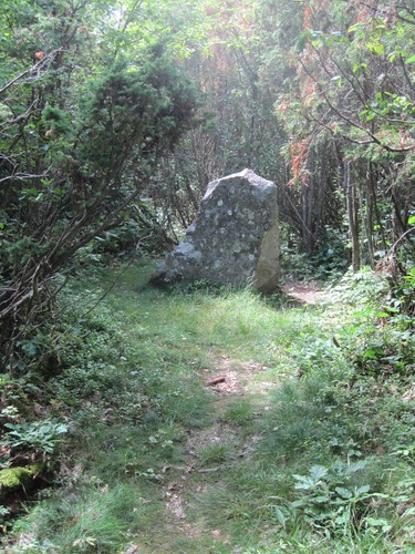 Stone - halfway to the Burial Mound