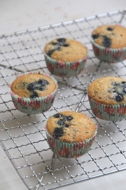 blueberry muffins on a rack