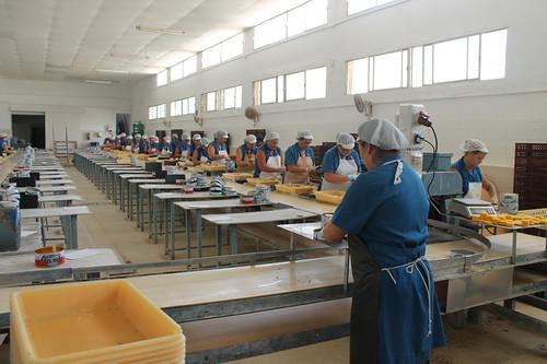 La Tarifeña Factory