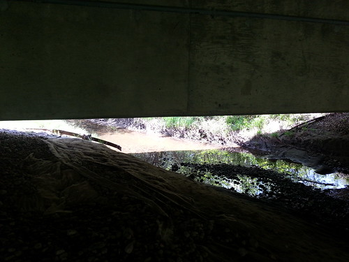 The Creek under the Bridge