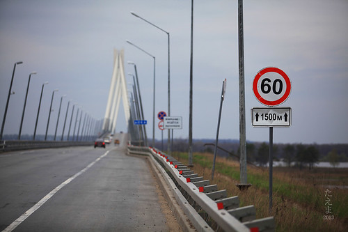 Muromskii bridge (2)