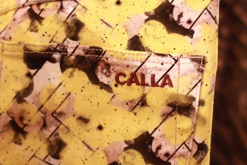 CALLA Fall-Winter 2013 015