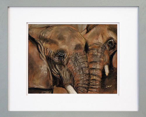 Pastel Elephant Drawing for Amy by Joseph W. Nienstedt
