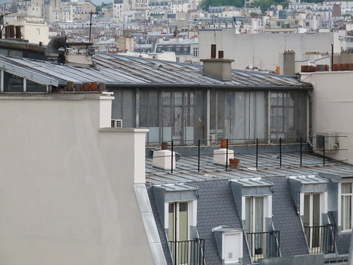 Tin & Slate rooftops of Paris
