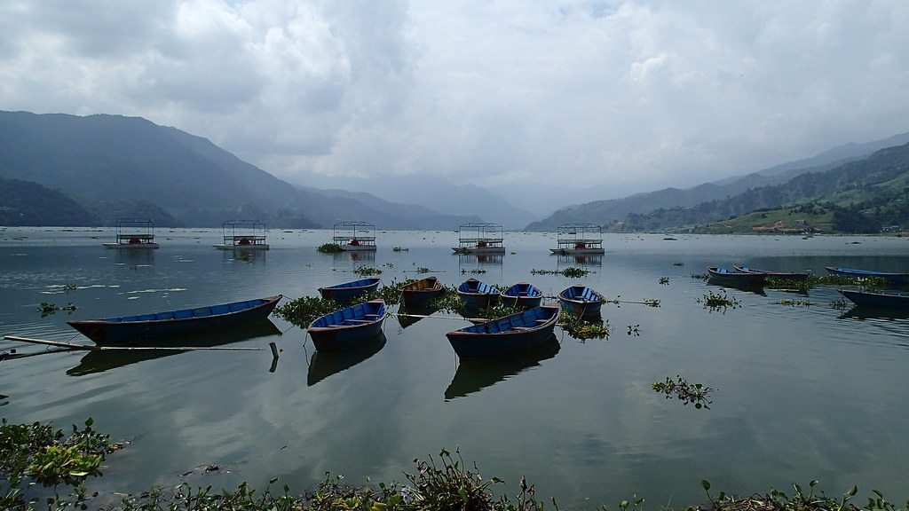 Colored boats on the Fewa lake, things to do in pokhara