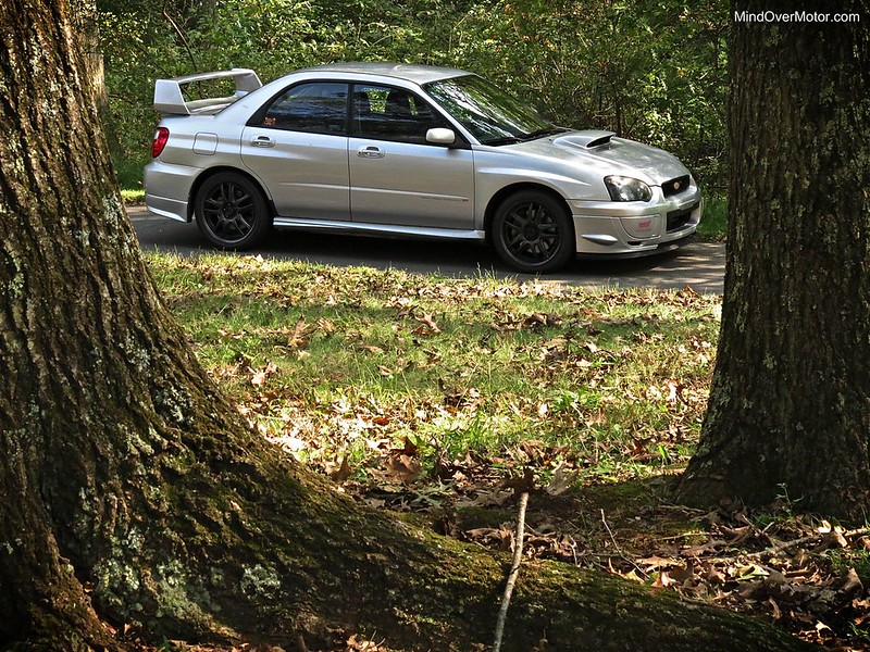 Subaru STi in the woods