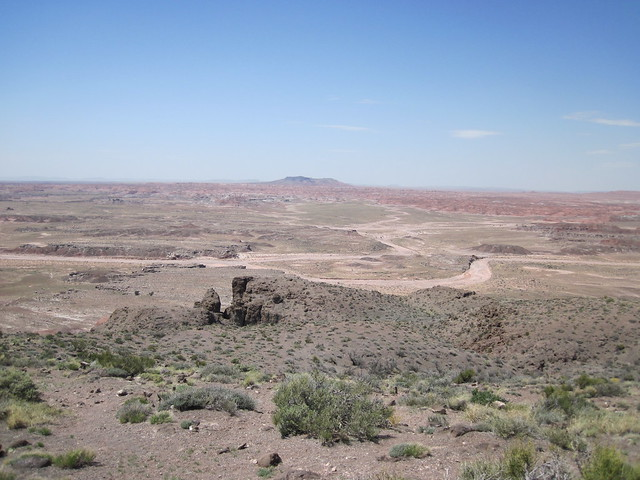 Picture from the Painted Desert, Arizona