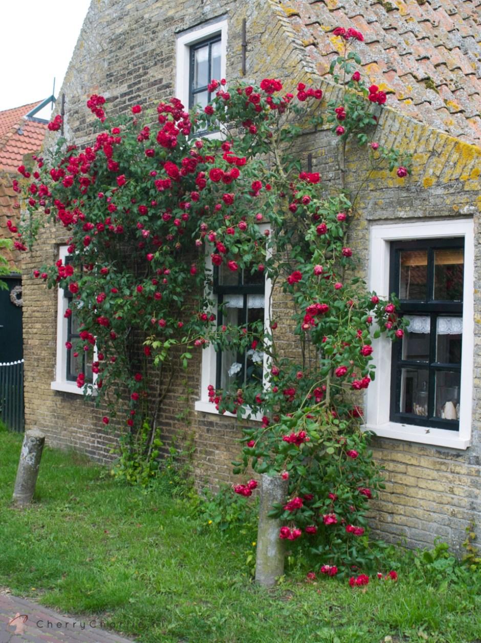 Foto-impressie weekendje Ameland • CherryCharlie.nl