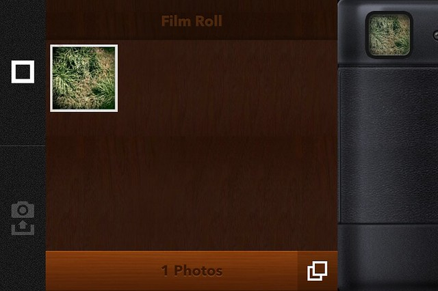 Camera Roll-3933