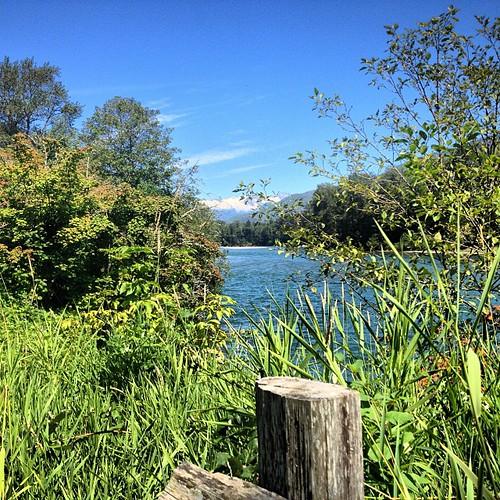 Skagit River, WA by @MySoDotCom