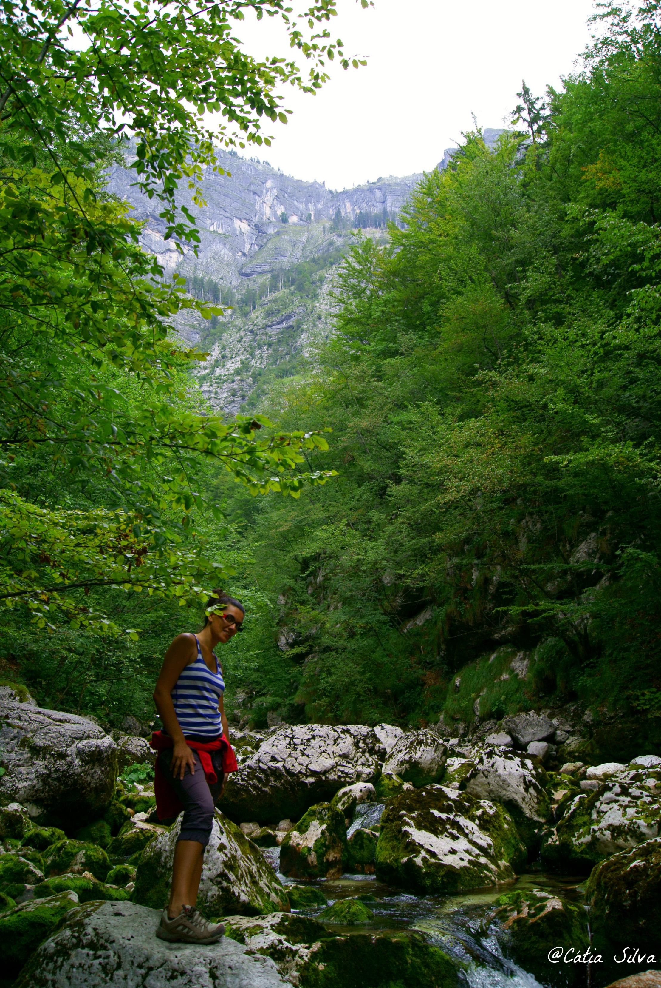 Slap Slavica - Lago Bohinj - Eslovenia (12)