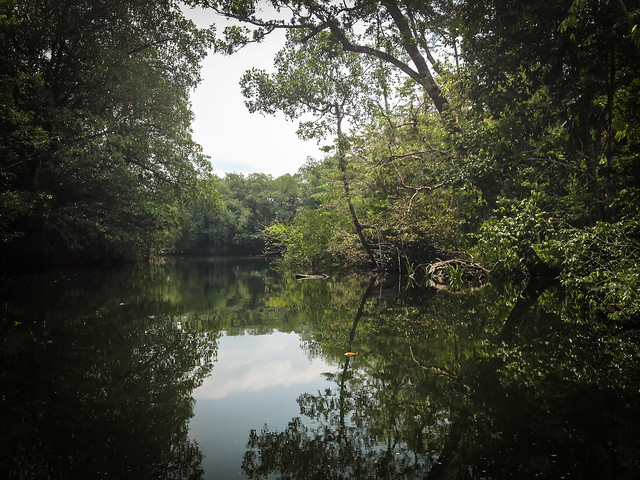 Exploring Rio Dulce-2